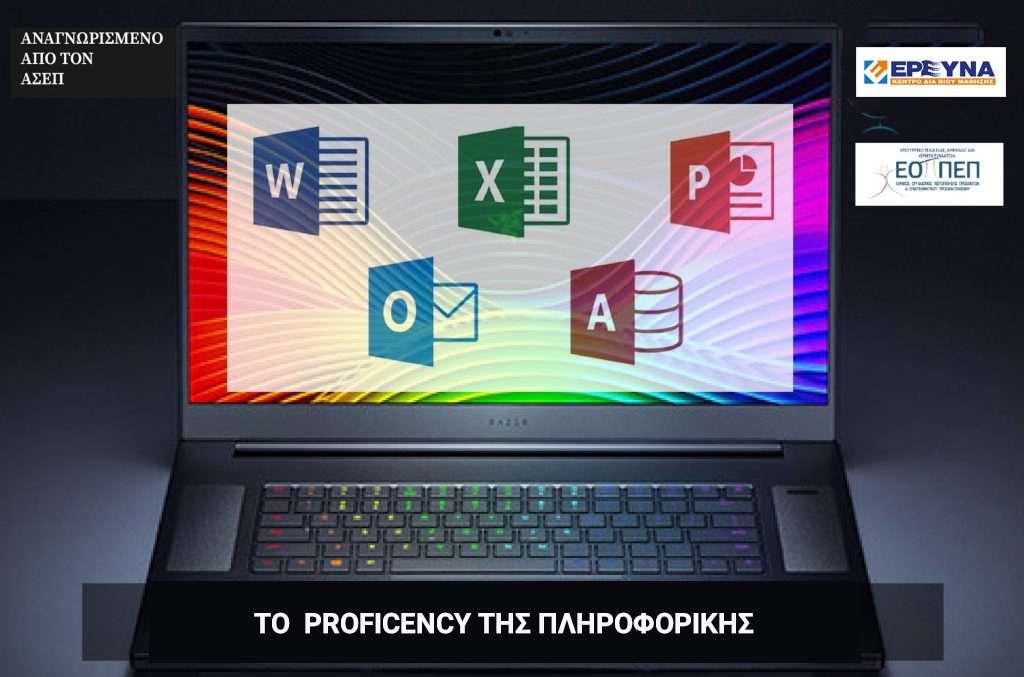 proficiency-computer-expert-ereyna